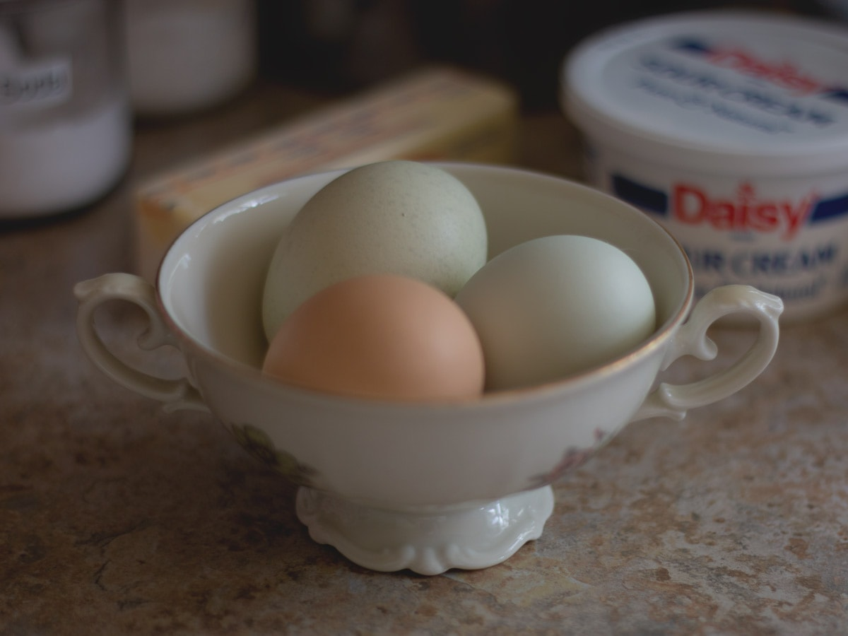 eggs in a dish