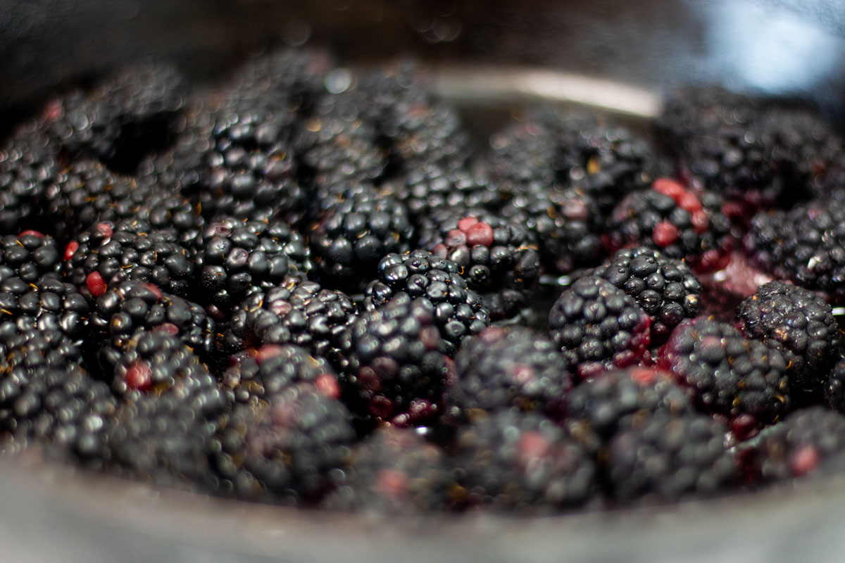 fresh blackberries in cast iron skillet