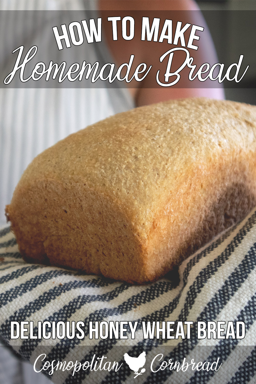 How to make Homemade Honey Wheat Bread with freshly ground wheat. The BEST homemade bread recipe!
