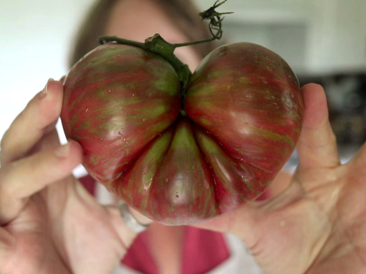 Funky Tomatoes and Food Mills