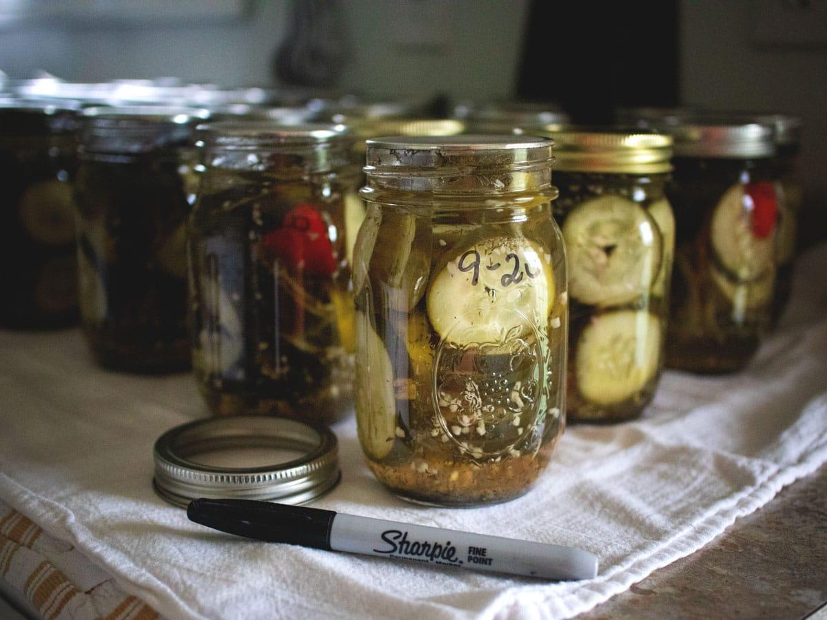 Our Favorite Spicy Dill Pickles | Cosmopolitan Cornbread