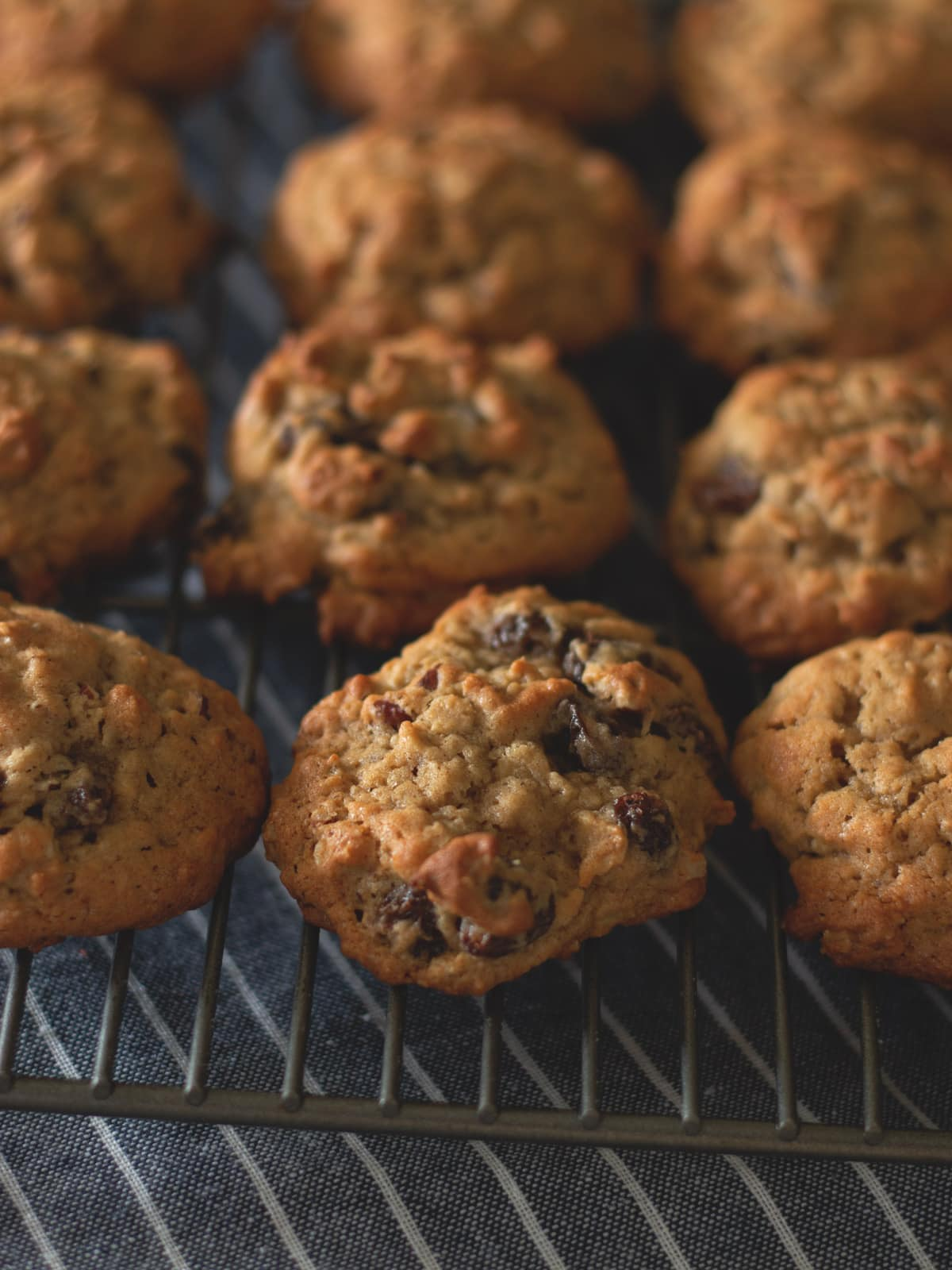 Oatmeal Raisin Cookies, cooling on a rack.