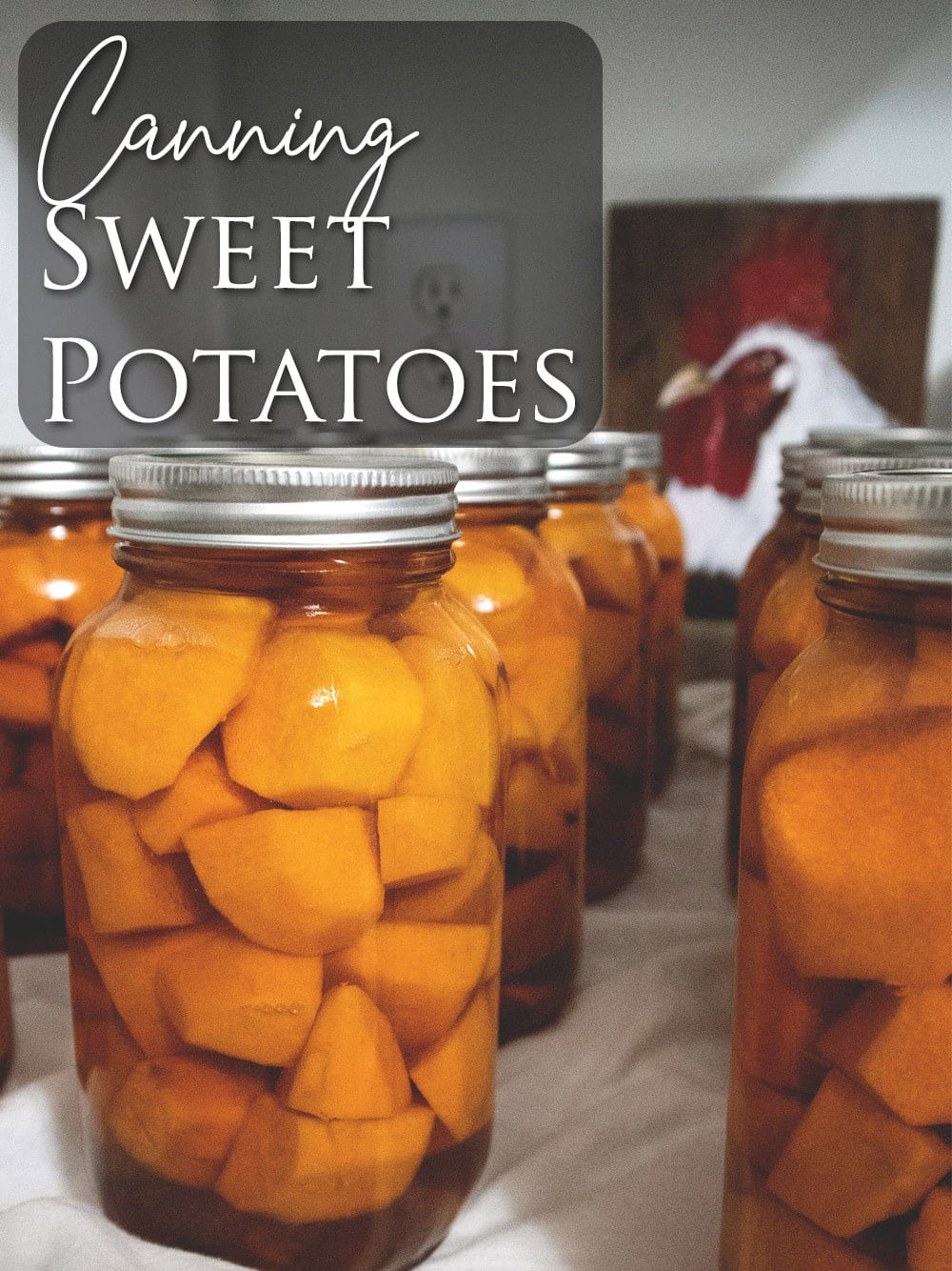 Today I brought you into the kitchen to  join me as I canned some sweet potatoes.