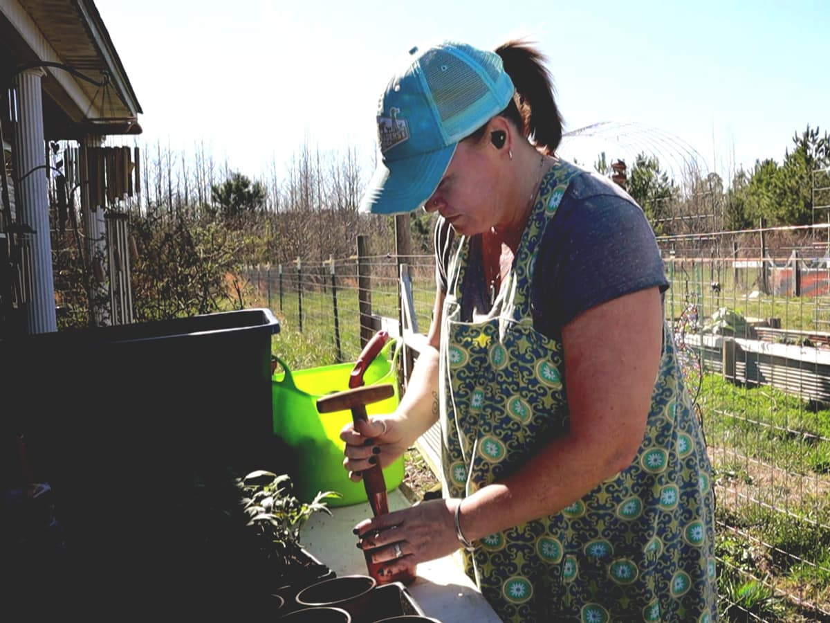 It is official. Garden season is beginning. Today I began transplanting and separating my seedlings. Then I walked out into the garden a shared a couple things that are still out there.
