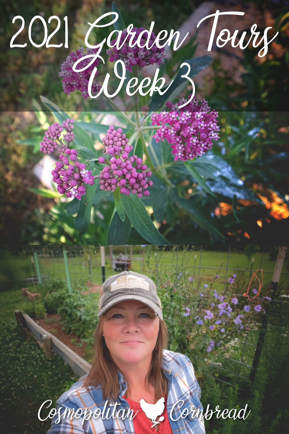 Join me for this week's garden tour, and see how the gardens are coming along.