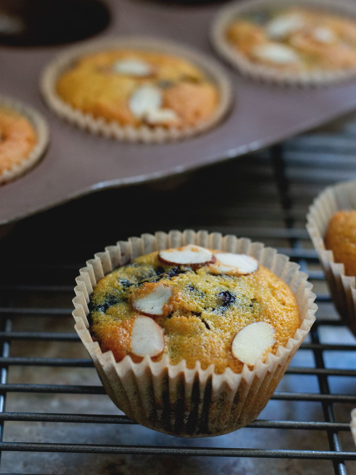 These Almond Blueberry Muffins are made with coconut flour and are lightly sweetened. A perfect start to any morning.