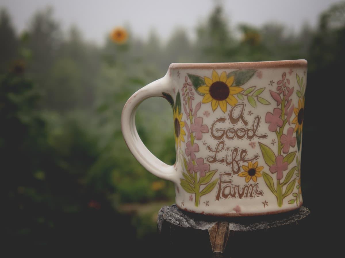 An Early Morning Garden Tour - Week 11 of the 2021 garden season.