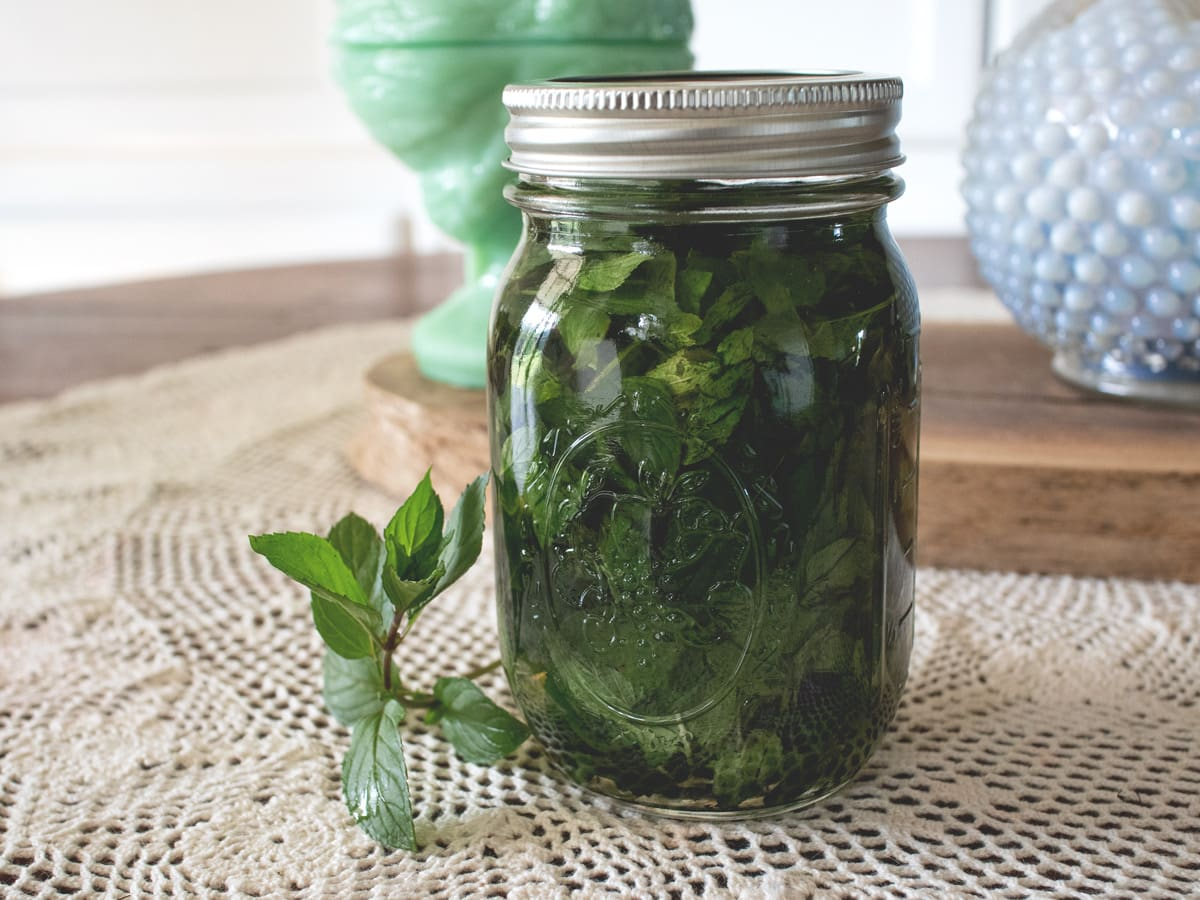 Learn how to make your own mint extract at home with this easy DIY tutorial.