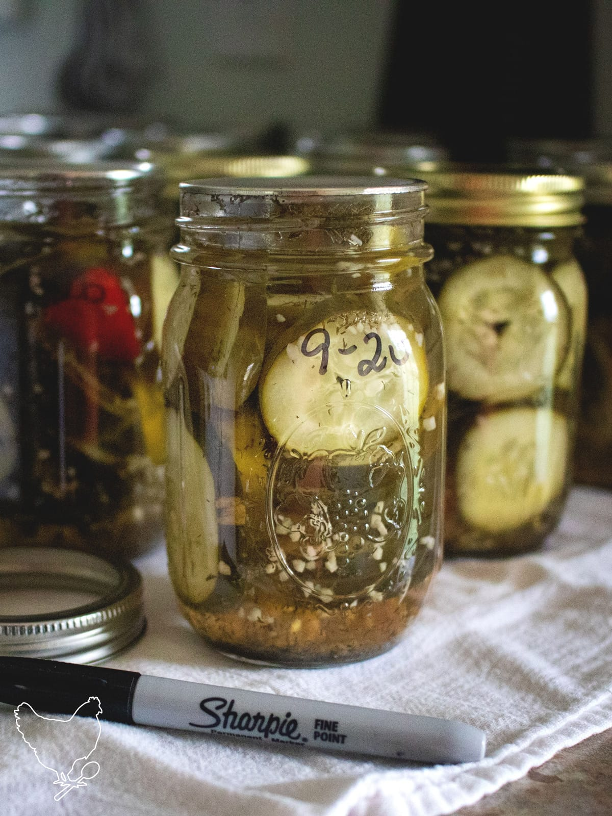 These spicy dill pickles are packed full of flavor, and not too sweet. I can barely keep jars of them in the pantry, because they get eaten so fast!